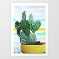 Summer Succulent Art Print