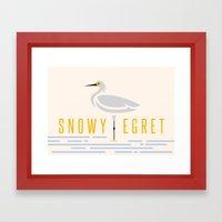 Snowy Egret Framed Art Print