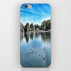 Day at the Lake iPhone & iPod Skin