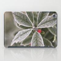 cold iPad Case