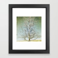 Tree 5 Framed Art Print