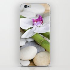 Orchid and Bamboo iPhone & iPod Skin