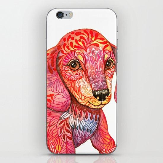 Mini Dachshund  iPhone & iPod Skin