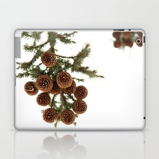 (Spruce or Fir) Cones Laptop & iPad Skin