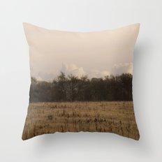 Old Fields Throw Pillow