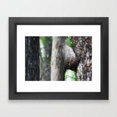 Tree sex  Framed Art Print