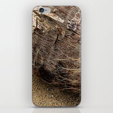 Gift of Nature iPhone & iPod Skin