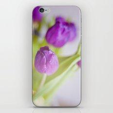 Tulipanes morados.  iPhone & iPod Skin
