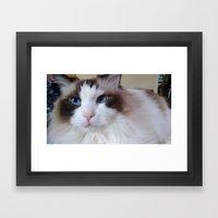 Mon Chat Framed Art Print