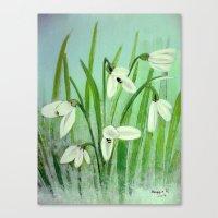Snow drops  Canvas Print