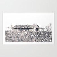 Lost In Cotton Art Print