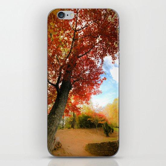 Autumn Tree Scene iPhone & iPod Skin