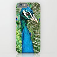 iPhone & iPod Case featuring Peacock by Celso Azevedo