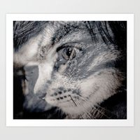 Cat vs human black / white Art Print
