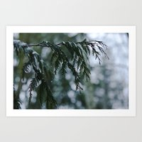 Winter Rain Art Print