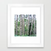 Telluride forest Framed Art Print