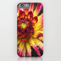 Dahlia Photography Close Up Macro photography iPhone 6 Slim Case