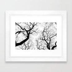 Black And White Tree Top… Framed Art Print