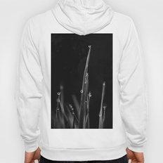 Black Grass Hoody