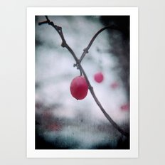 Lonely Winterberry Art Print