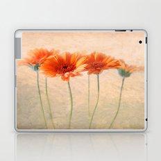 Orange Gerberas Laptop & iPad Skin