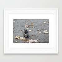 One can never capture the wild.  Framed Art Print
