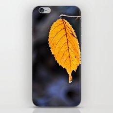Orange Leaf iPhone & iPod Skin