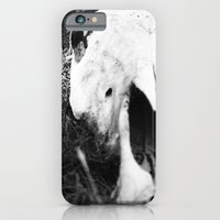 iPhone & iPod Case featuring The Skull of a Cow by Zia Sombra