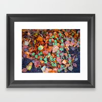 Clovers In Fall Framed Art Print