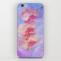Rosa Orchideen iPhone & iPod Skin