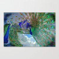 Peacocks In Clouds Canvas Print