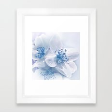 Spring white- blue 75 Framed Art Print