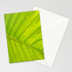 Tropical Leaf Vein Abstract Stationery Cards