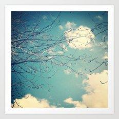 Through the Branches Art Print