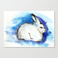 Grumpy Artic Hare Canvas Print