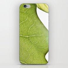 Little Green Roads iPhone & iPod Skin
