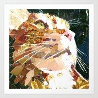 Banjo The Cat Art Print