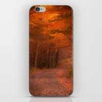 Autumns Passage iPhone & iPod Skin