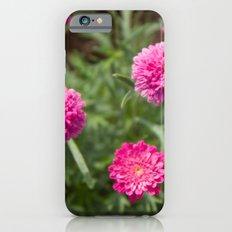 Reine Marguerite #1 iPhone 6s Slim Case
