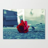 Tacoma Rose Canvas Print