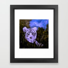 White Tiger Cub all alone. Framed Art Print