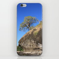 A Lonely Tree iPhone & iPod Skin