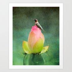 Hummingbird And The Lotu… Art Print