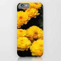 Golden Dew Drops II. iPhone 6 Slim Case