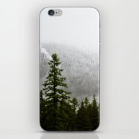 glacier iPhone & iPod Skin