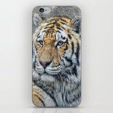 panthera tigris iPhone & iPod Skin