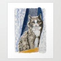 Grey cat  Sitting in Window  Art Print