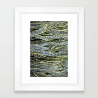 Snake Plants Framed Art Print