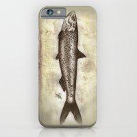 Sardine iPhone 6 Slim Case