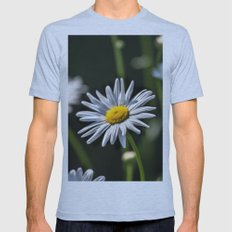 Daisies Mens Fitted Tee Athletic Blue SMALL